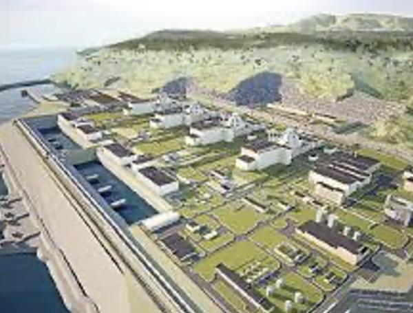 Akkuyu nükleer enerji santrali, Türkiye
