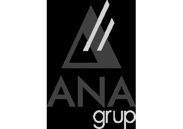 Ana Grup